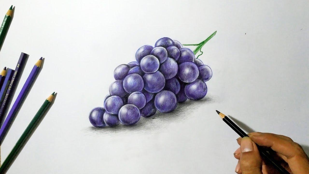 Download Lukisan 3d | Menggambar Buah Anggur dengan Pensil warna