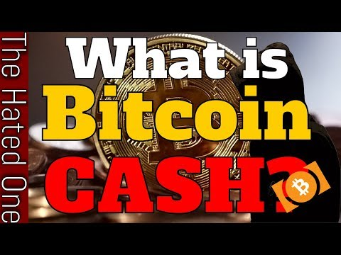 Bitcoin Cash New Cryptocurrency Explained! Bitcoin August Fork Split