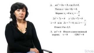 Математика. Квадратные уравнения #1