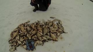 Ловля подлещика на Иваньковском водохранилище. Ловля на черта