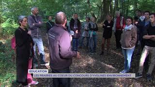 Yvelines Environnement : nouveau concours pour protéger l'éco-système