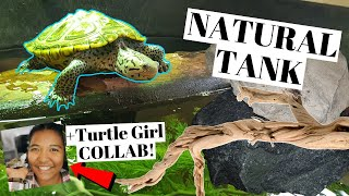 Natural TURTLE Tank TIPS/Design | Collaboration w/ The Turtle Girl