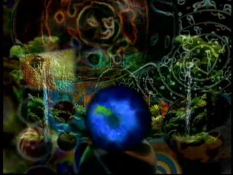 Terence McKenna Video Archive - #31: Strange Attractor (2003)