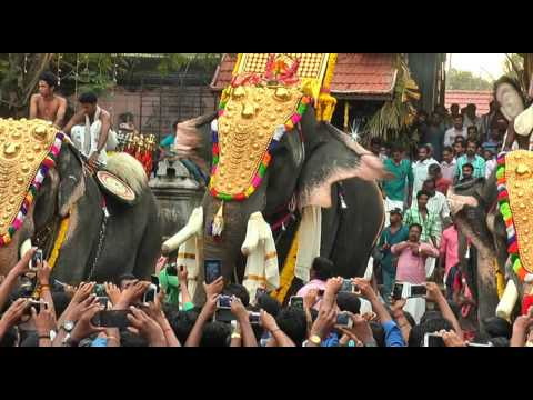 Thrikkadavoor Sivaraju at Aavaninchery Pooram 2015 -2
