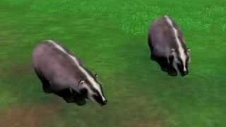 Repeat youtube video My Zoo Tycoon 2 Animal Downloads