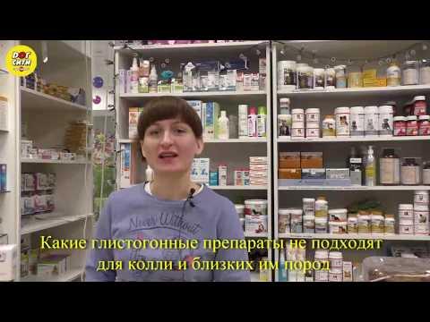 Какие антипаразитарные препараты можно колли