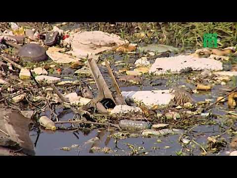 Hồ giữa trung tâm Hà Nội ô nhiễm nghiêm trọng   VTC14