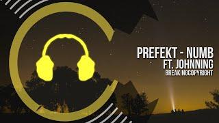 Prefekt - Numb Ft. Johnning | Copyright Free Music (Free Download)