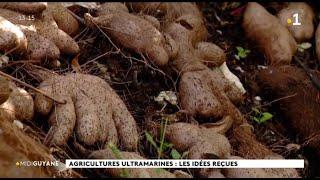 Agricultures ultramarines : les idées reçues