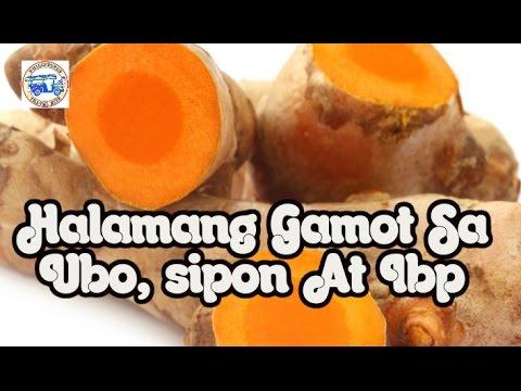 site ng paglalakbay Pilipinas Mga Halamang Gamot Sa Lagnat