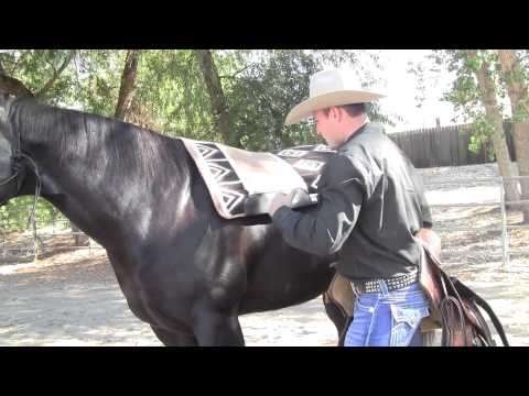 Professional's Choice SMx Air Ride Saddle Pad