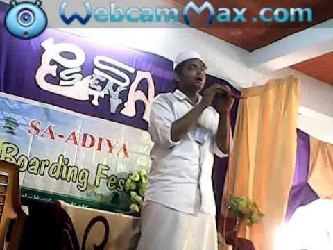 Saadiya Boarding fest Essentia-16 Shameel