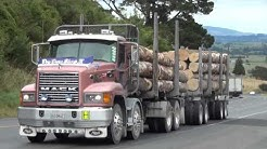 Loggers on the Kaimais