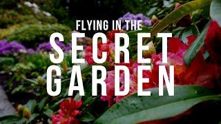 Kite flying in the Secret Garden