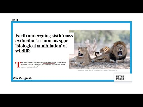 Last Call: Earth heading for sixth mass extinction