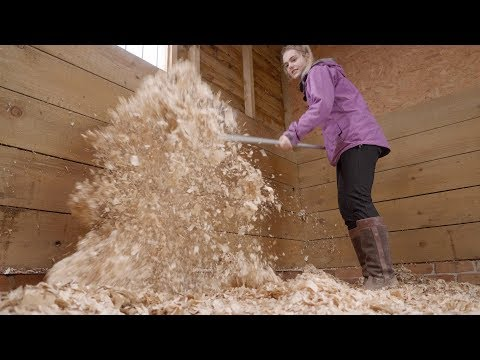 HOW TO MUCK OUT A STABLE/STALL | *Satisfying* | This Esme
