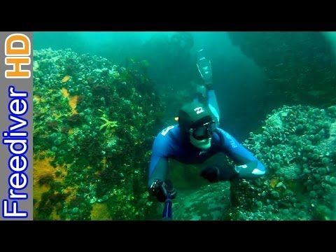Freediving Cape Town - Sandy Cove