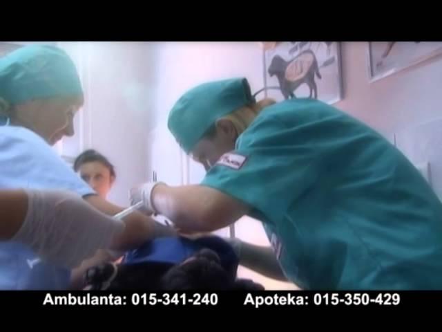 Vet stanica Sabac - reklamni spot