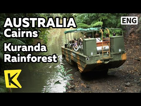 【K】Australia Travel-Cairns[호주 여행-케언스]쿠란다 열대우림, 장갑차 아미덕/Kuranda/Rainforestation Nature Park/Army Duck
