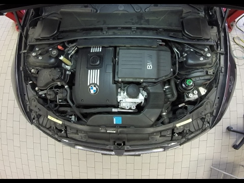 2010 bmw 335i oil capacity