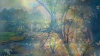 NHAC THIEN PHẬT GIÁO HAY- MEDITATION MUSIC 2017
