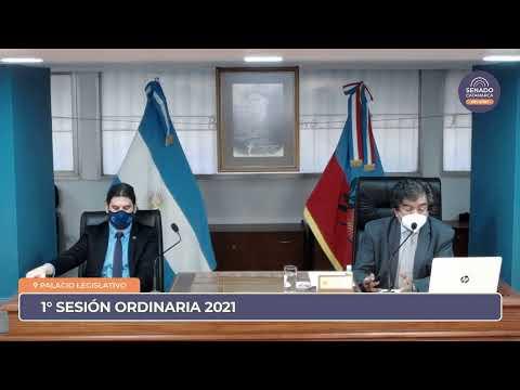 EN VIVO: Primera Sesión Ordinaria 2021