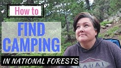 How to FIND FREE CAMPING in National Forests! 7 TIPS, The RULES, & MY LAST 3 SPOTS!
