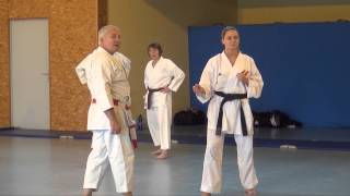 Stage de Karaté - Karaté Club du Serein - Édition 2015 à L'Isle sur Serein (89)
