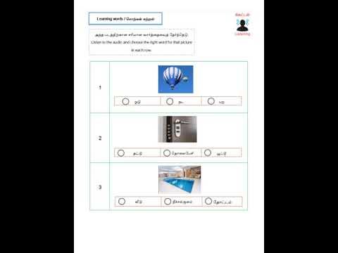 BASIC 2 Semester 1 Lesson 8 Homework Vocabulary