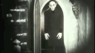 REDiQ X Nosferatu