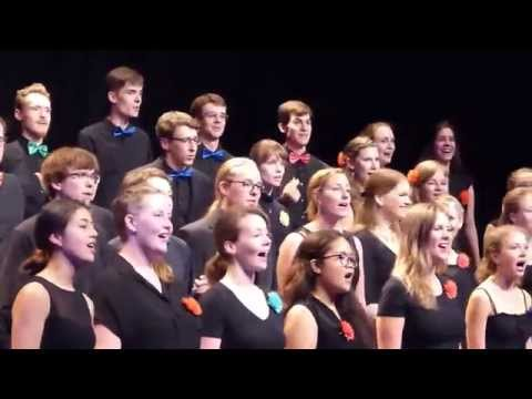 The Cup song (When I'm gone; Pitch Perfect) - Psycho-Chor Jena