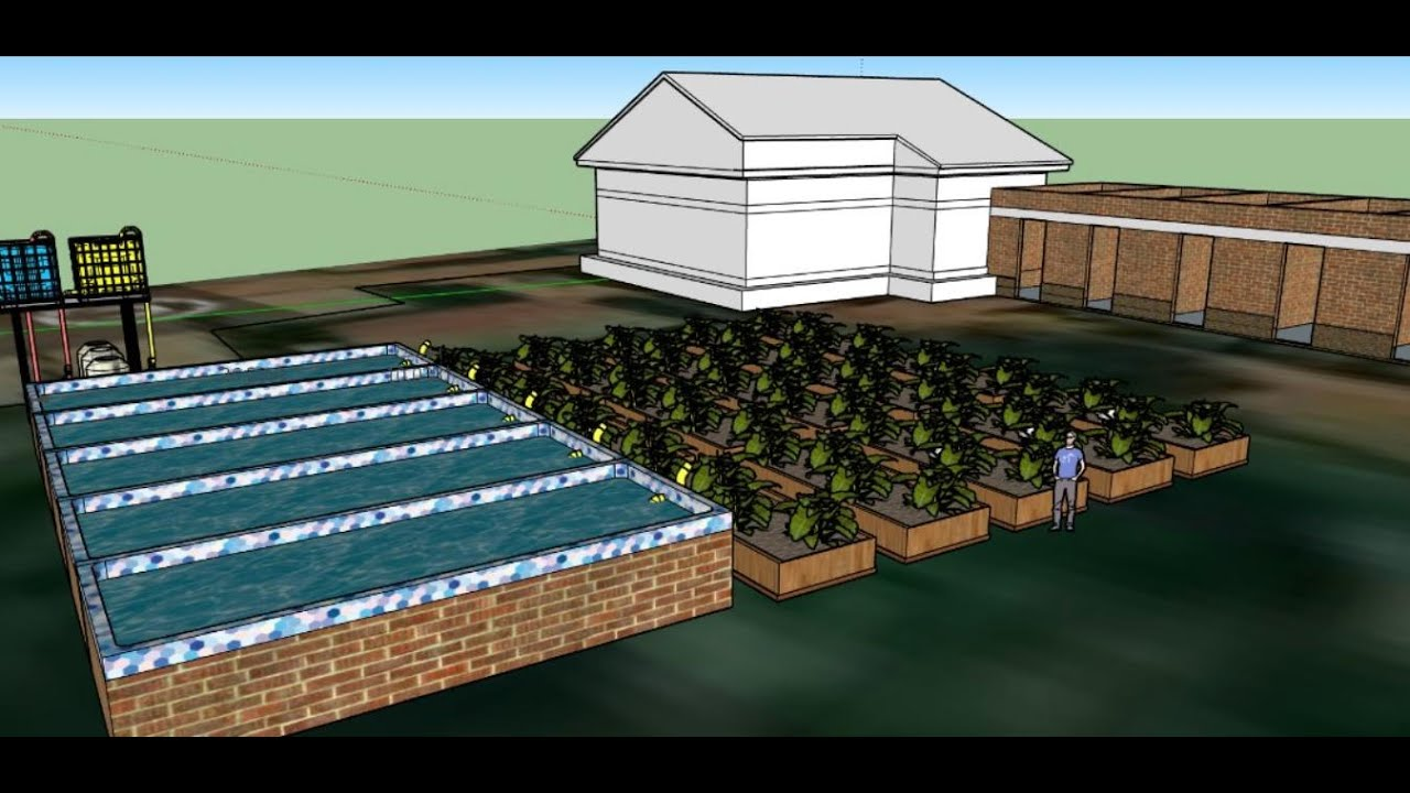 Backyard Commercial Aquaculture Zoom meeting - YouTube