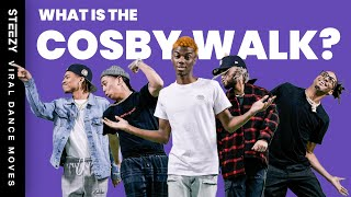 What Is The Cosby Walk / 3 Vets Challenge? | TikTok Dances Explained! | STEEZY.CO