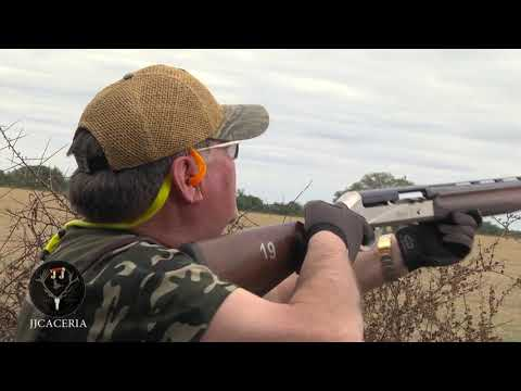 Dove Hunting In Argentina With JJcaceria May 2019