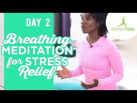 Breathing Meditation for Stress Relief - Day 2 - 30 Day Meditation Challenge