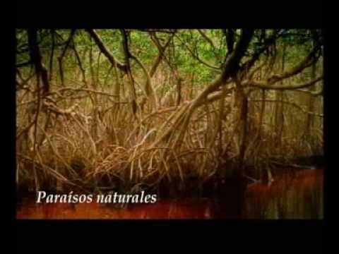 COSTUMBRES Y TRADICIONES DEL ESTADO DE MORELOS de YouTube · Duração:  6 minutos 16 segundos