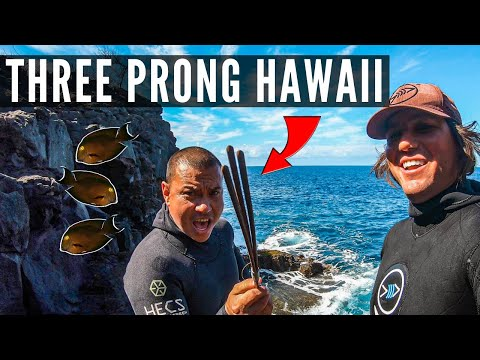 Spearfishing Hawaii Three Prong Hunting With Justin Lee