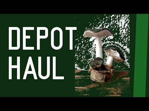 DEPOT Haul