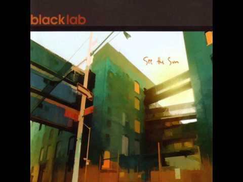 black lab-broken heart