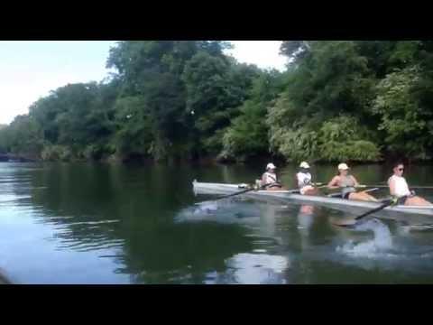 Gini upstream