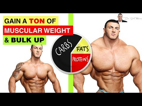 💪 How To Gain A Ton Of Muscular Weight & Bulk Up - Best Diet - by Dr Sam Robbins