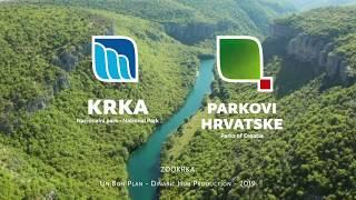 Krka, Wild nature: Fishes