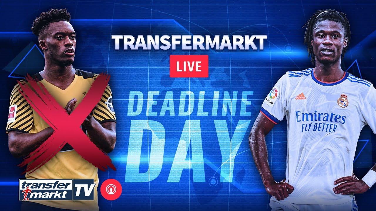 Download Deadline Day LIVE: Alle Transfers und Gerüchte des Tages im Überblick | TRANSFERMARKT