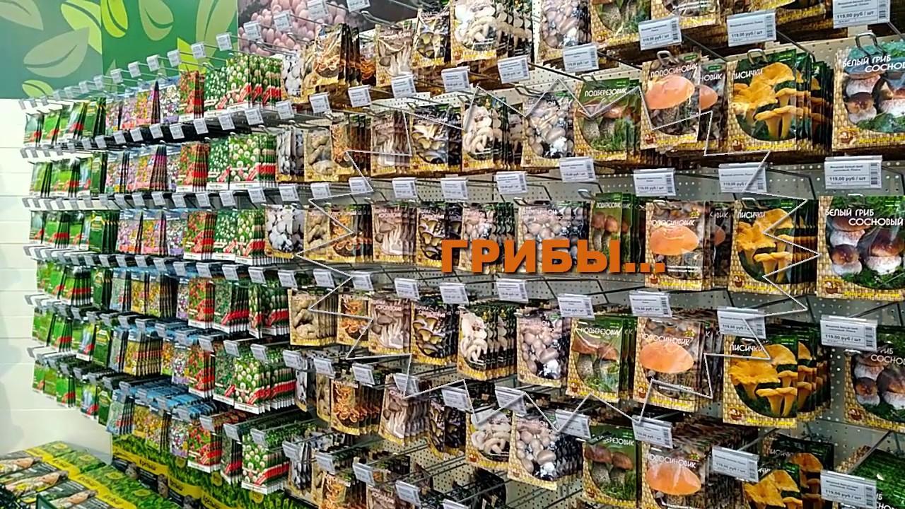 . Товары для дома по выгодным ценам в москве. Купить горшки для комнатных растений можно быстро и просто. Горшки и кашпо для цветов. Фильтр.