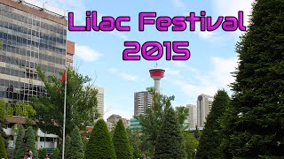 Calgary Lilac Festival 2015