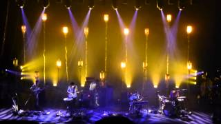 Grizzly Bear - A Simple Answer