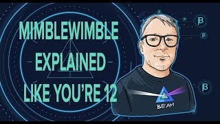 Mimblewimble Explained Like You're 12