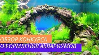 Конкурс Хрустальный аквариум 2016 | Competition of aquarium design