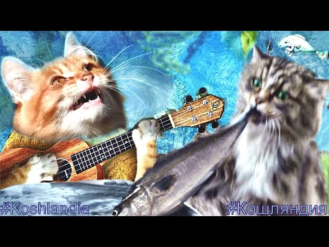 """""""Ты Рыбачка, Я...,""""- Рыжий Кот Мечтает о Большой Рыбе #кошки Fish Dream #Ginger_cat Song"""