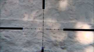Air Arms MPR FT 100 meter shooting